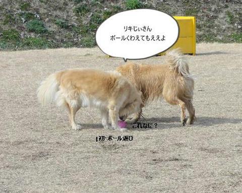 run20120130-12.JPG