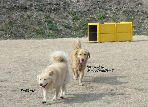 run20120130-13.JPG