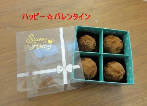 run20120214-7.JPG