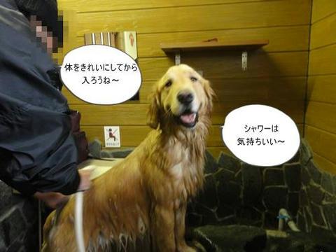 run20120225-2.JPG