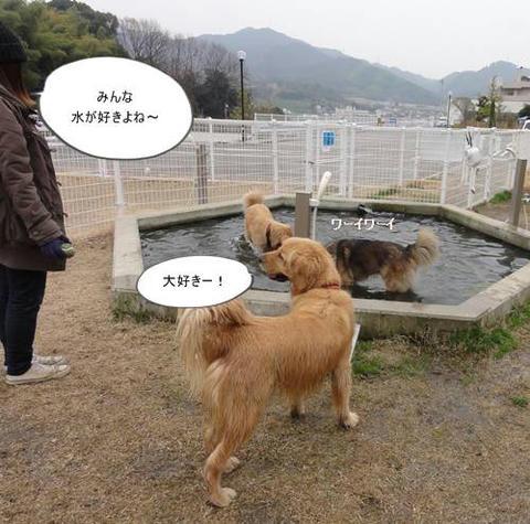 run20120307-4.JPG