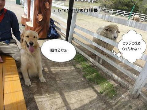 run20120422-10.JPG