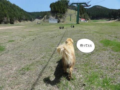 run20120424-1.JPG