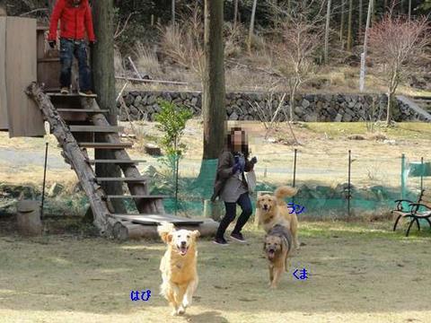 run20120503-1.JPG