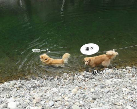 run20120508-1.JPG
