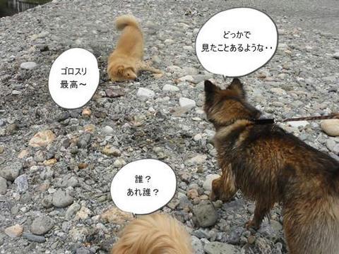run20120508-3.JPG