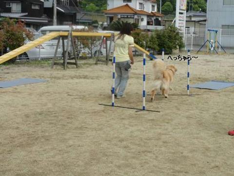 run20120630-5.JPG