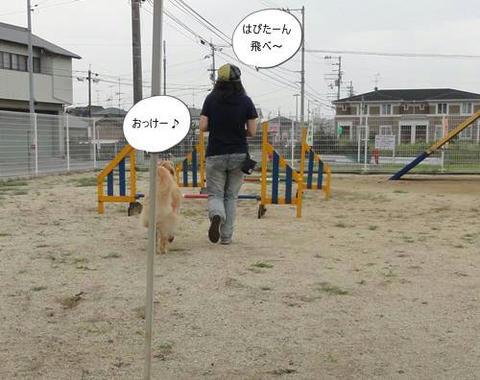 run20120715-1.JPG