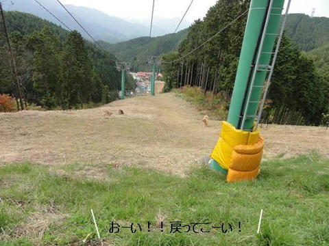 run20121027-13.JPG