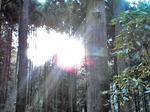 入四間、賀毘礼の山に射す陽光