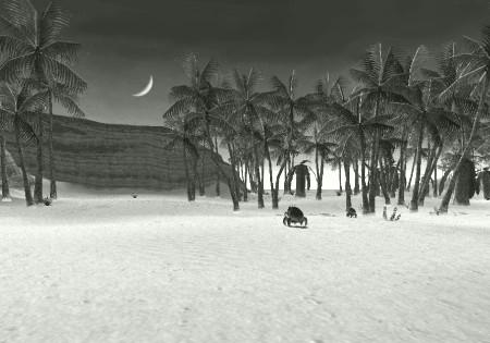 Valkurm Dunes_mono