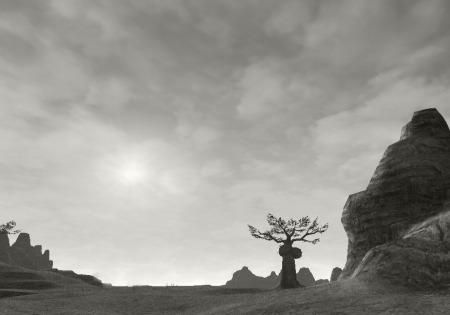 Tahrongi Canyon_mono