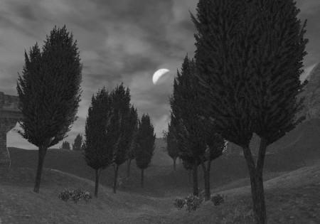 Rolanberry Fields_mono