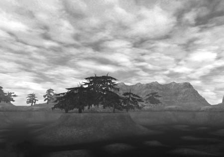 Jugner Forest_mono