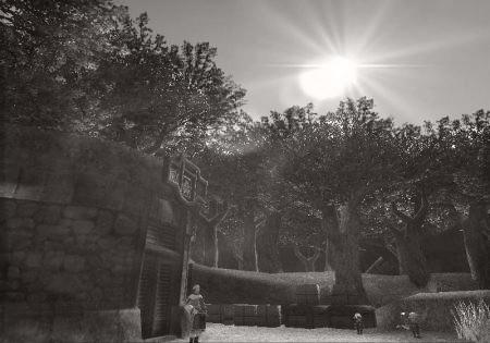 Windurst Walls_mono