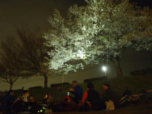 2011.04.09-4.jpg