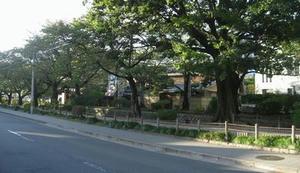 20091016G.jpg