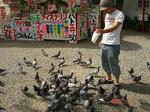 鳩と戯れ(^^ゞ