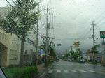 雨が・・・(>_<)