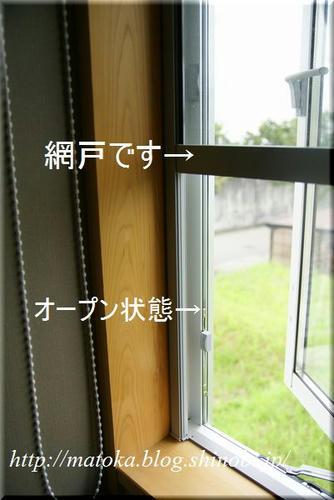 DSC06861.jpg