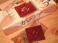 2007_1011_220151AA.jpg