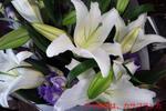 20110809_130105.jpg
