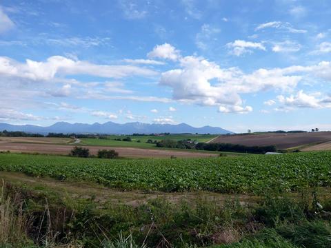 美瑛の丘から十勝岳連峰を望む