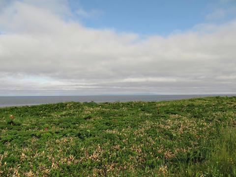 雲に覆われた利尻島