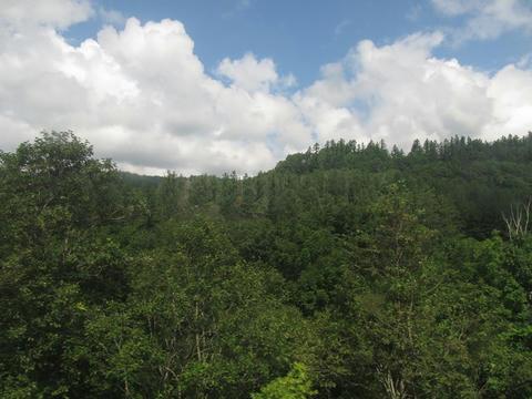 石勝線沿線風景