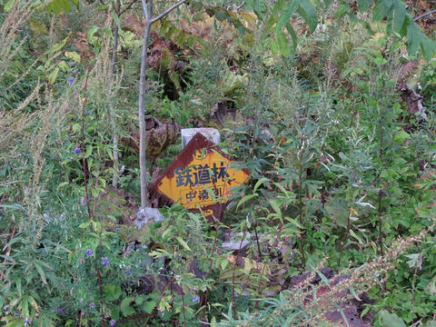 鉄道林標識@サロマ湖畔