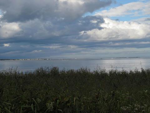 湧別町水芭蕉群生地からサロマ湖を望む