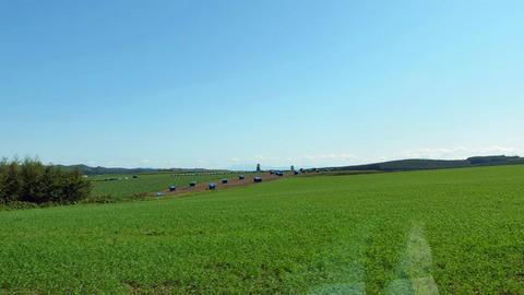 道道556号緋牛内北見線沿道風景