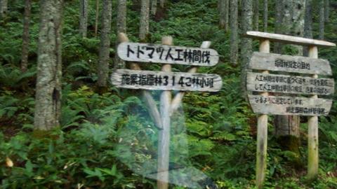 トドマツ人工林看板@道道592号湯里生田原停車場線