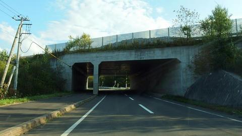 道道849号日東東雲線