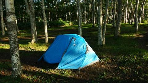 テント@だんパラ公園キャンプ場