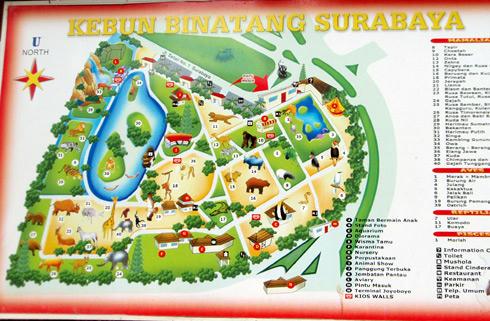 スラバヤ動物園 地図