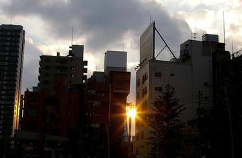 aoyamadoori1208.jpg