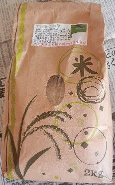 元町の水曜市で売られてた、兵庫県のteamsのお米