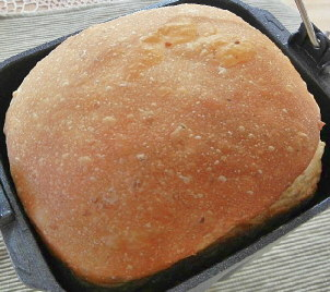 焼きたて玄米パン