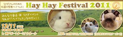 Hay-Hay-Festival-2011.jpg