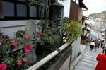 yoshitune7.jpg