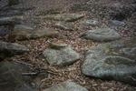 峰山高原の飛び石