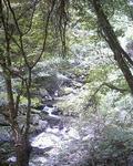 音水渓谷2