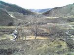 山焼き後の砥峰高原高い場所からの木道
