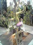 笹の下の鷺