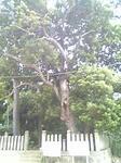 鈴が森神社