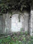 神子畑選鉱所跡のトンネル?