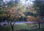 播磨中央公園の子供の広場