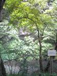 帝釈峡の岸壁