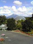 鳥取 花回廊から見た大山